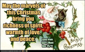 May the marvels of this Christmas bring you richness of spirit, warmth of love, and peace.