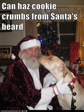 Can haz cookie crumbs from Santa's beard