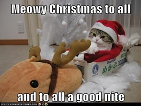 Meowy Christmas to all  and to all a good nite