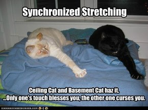 Synchronized Stretching
