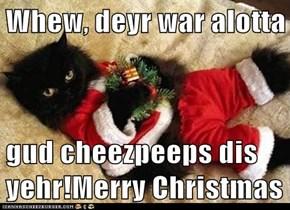 Whew, deyr war alotta  gud cheezpeeps dis yehr!Merry Christmas