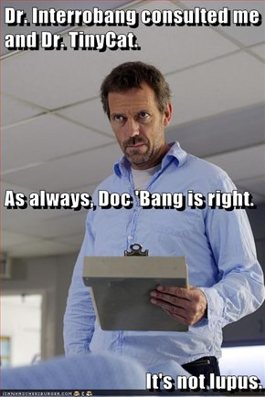 Dr. Interrobang consulted me and Dr. TinyCat.  As always, Doc 'Bang is right. It's not lupus.