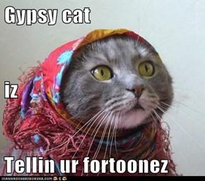 Gypsy cat iz Tellin ur fortoonez