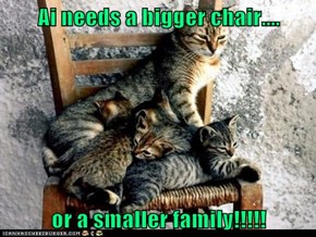 Ai needs a bigger chair....  or a smaller family!!!!!