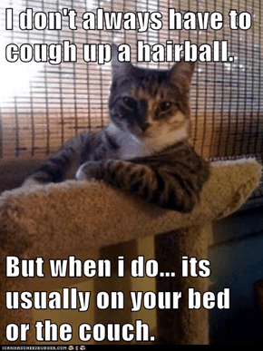 I don't always have to cough up a hairball.  But when i do... its usually on your bed or the couch.