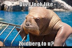 Duz I look like  Zoidberg to u?