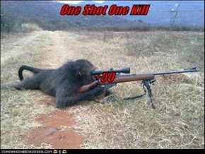 One Shot One Kill +50
