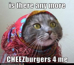 is there any more   CHEEZburgers 4 me