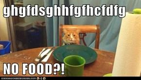 ghgfdsghhfgfhcfdfg  NO FOOD?!