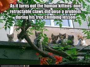 As it turns out the human kittens' non retractable claws did pose a problem during his tree climbing lesson