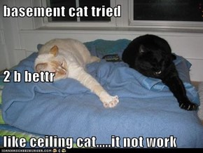basement cat tried 2 b bettr like ceiling cat.....it not work