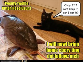 Twenty-twelbe Kitteh Resolusunz