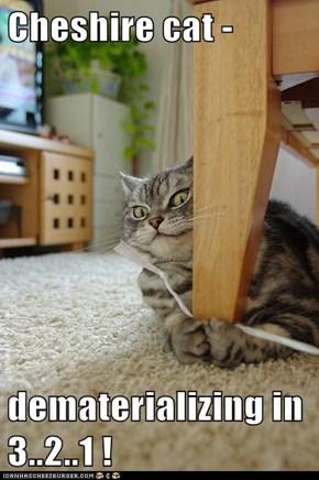 Cheshire cat -  dematerializing in 3..2..1 !