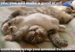 yes, you will make a good scarf ...  once i can wrap you around twice!!!