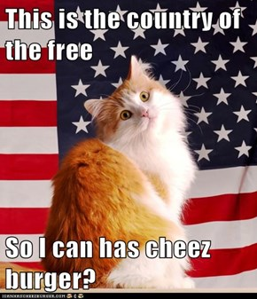 This is the country of the free  So I can has cheez burger?