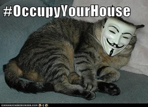 #OccupyYourHouse