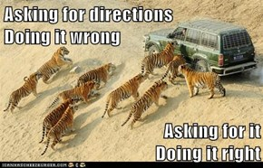 Now I Know The Difference Between Tigers and GPS