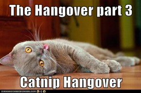 The Hangover part 3  Catnip Hangover