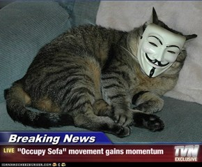 "Breaking News - ""Occupy Sofa"" movement gains momentum"