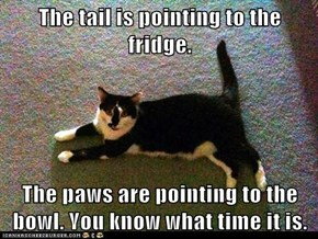 The tail is pointing to the fridge.  The paws are pointing to the bowl. You know what time it is.