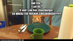 Awl rite...I call BS...U sed I can has cheezburger.SO WHERZ TEH FRICKIN' CHEEZBURGER????