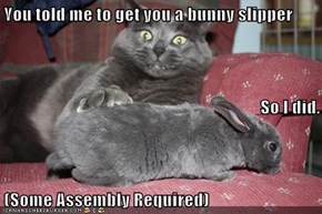 You told me to get you a bunny slipper So I did. (Some Assembly Required)