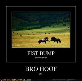 BRO HOOF