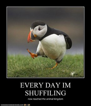 EVERY DAY IM SHUFFILING