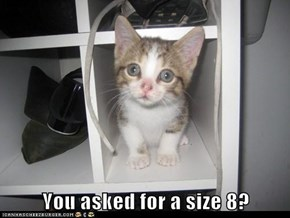 You asked for a size 8?