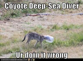 Coyote Deep-Sea Diver  Ur doin it wrong
