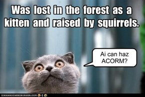 Was  lost  in  the  forest  as  a  kitten  and  raised  by  squirrels.