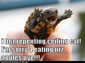 i bez repenting ceiling cat! I'm sorry 4 eating urz apples pye!!!