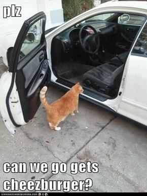 plz  can we go gets cheezburger?
