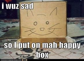 i wuz sad  so I put on mah happy box