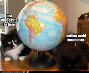 World domination, you say...
