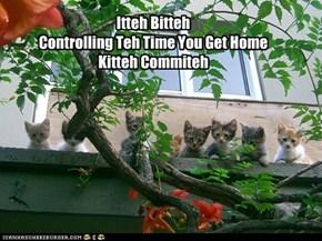 Kitteh Control