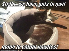 Stella...we have gots to qwit  going to catnip pawties!