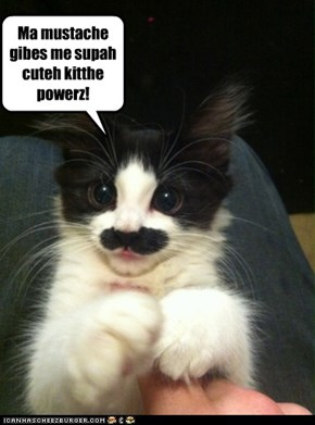 Kitteh Mustache