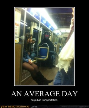 AN AVERAGE DAY