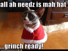 all ah needz is mah hat  ...grinch ready!