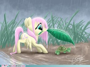 A Protective Fluttershy