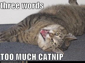 three words   TOO MUCH CATNIP