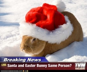 Breaking News - Santa and Easter Bunny Same Person?