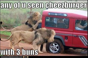 any of u seen cheezburger  with 3 buns