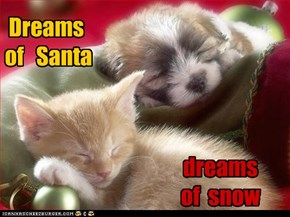 Dreams  of   Santa