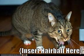 {Insert Hairball Here}