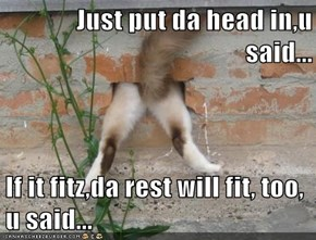Just put da head in,u said...  If it fitz,da rest will fit, too, u said...