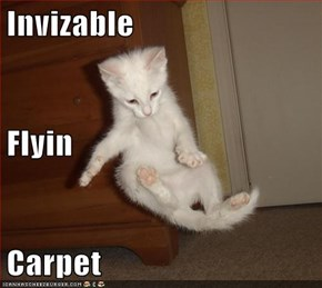 Invizable Flyin Carpet
