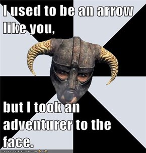 I used to be an arrow like you,  but I took an adventurer to the face.