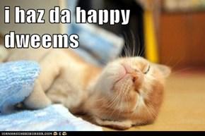 i haz da happy dweems